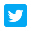icons8-twitter-squared-96.png